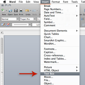 insert text box in Word document